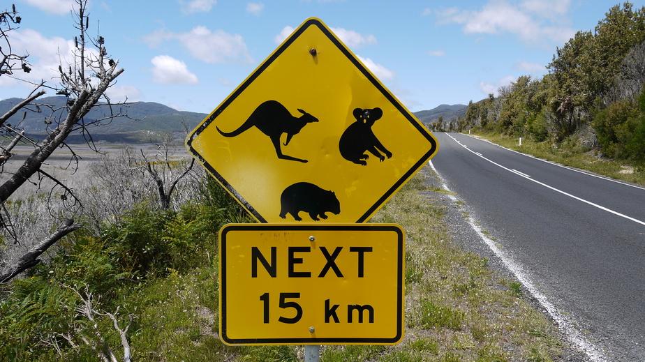 ein gelbes Verkehrsschild in Australien